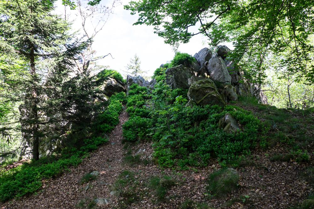 Hunsrück - Der Felsenturm auf dem Ringskopf bei Allenbach