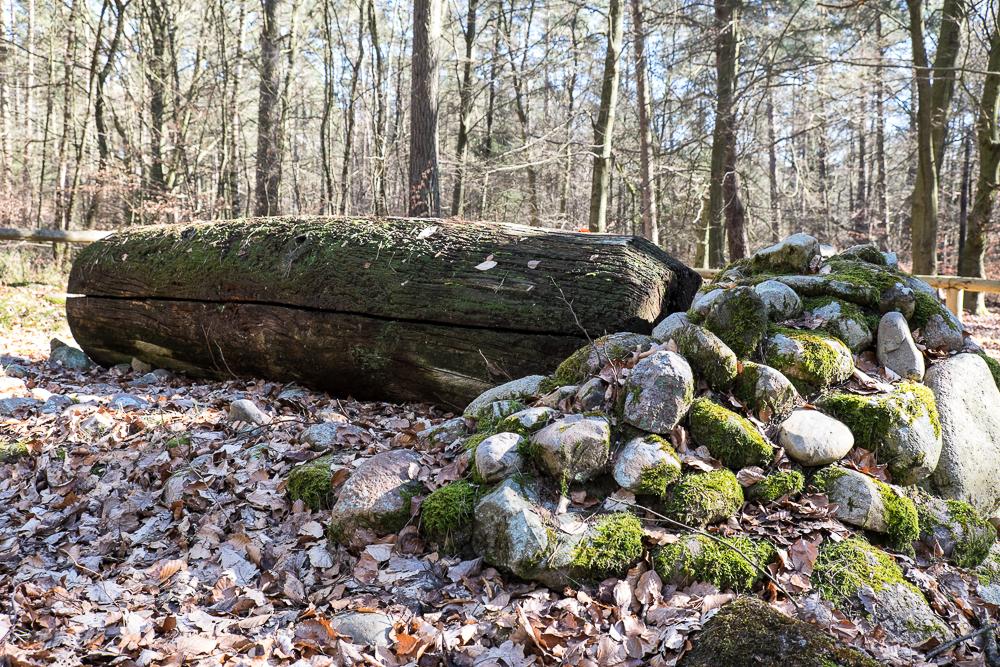Hamburg - Archäologischer Wanderpfad: Rekonstruktion des bronzezeitlichen Baumsarges
